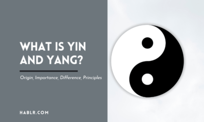 What is Yin and Yang Origin, Importance, Difference, Principles -min