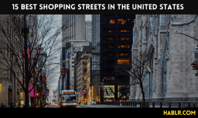 15 Best Shopping Streets in the USA-min