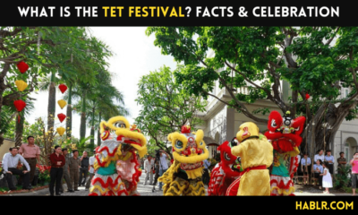 What is the tet festival? FACTS & CELEBRATION