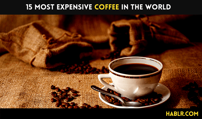 15 Most Expensive Coffee in the World