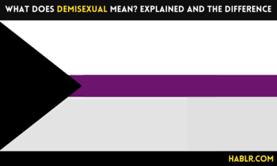 What Does Demisexual Mean Explained and The Difference-min
