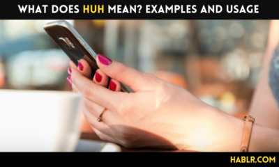 What does HUH mean Examples and Usage-min