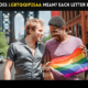 What does LGBTQQIP2SAA mean Each Letter Explained-min