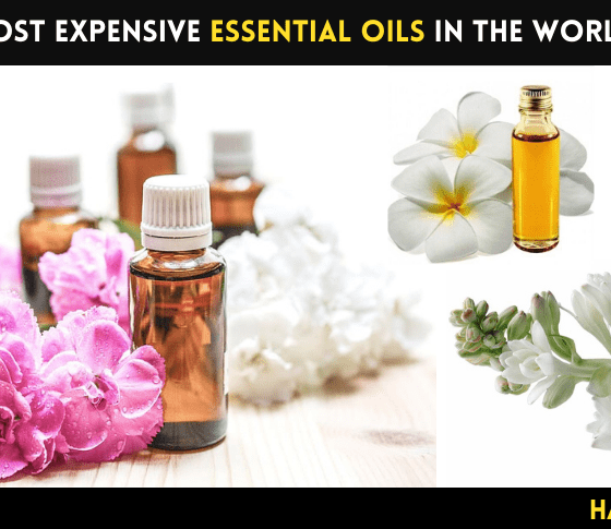 Most Expensive Essential Oils in the World